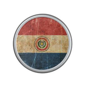 Scratched and Worn Vintage Paraguay Flag Bluetooth Speaker