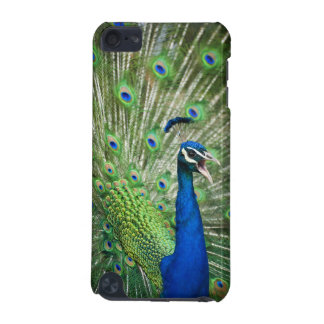 Screaming peacock iPod touch (5th generation) case