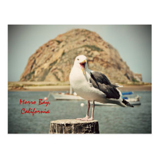 Screaming Seagull Morro Bay California Post Card