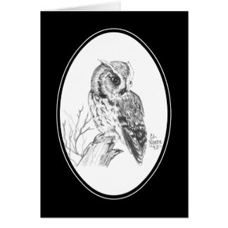 Screech Owl Card in pencil