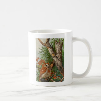 Screech Owl (color phases) Coffee Mugs