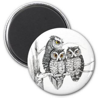 Screech Owl Family Magnet