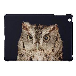 Screech Owl iPad Mini Covers