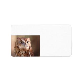 screech owl address label