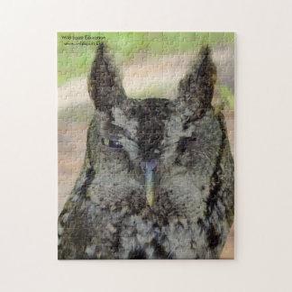 Screech Owl puzzle