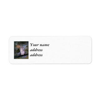 Screech Owl Return Address Label