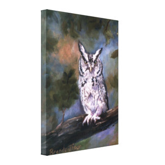 Screech Owl Wrapped Canvas Gallery Wrapped Canvas