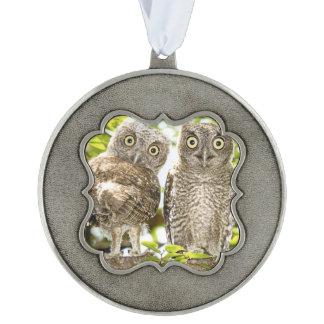 Screech Owls Chicks Scalloped Ornament
