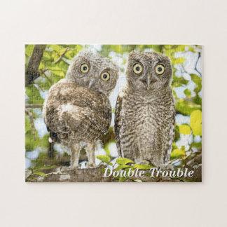 Screech Owls Chicks Puzzles
