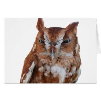 Screeching Owl Card