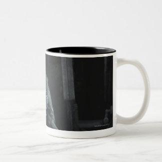 Screenshot: Nightwing Two-Tone Mug