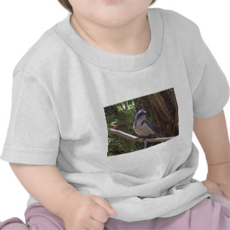 Scrub Jay T-shirt