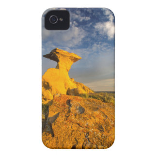 Sculpted Badlands Formation In Short Grass Case-Mate iPhone 4 Case