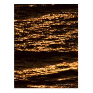 Sea 19 postcard