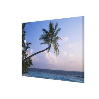 Sea and Palm Tree Canvas Print