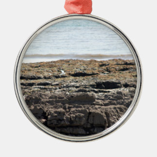 Sea and rocks Silver-Colored round decoration