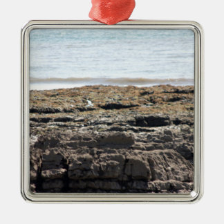 Sea and rocks Silver-Colored square decoration