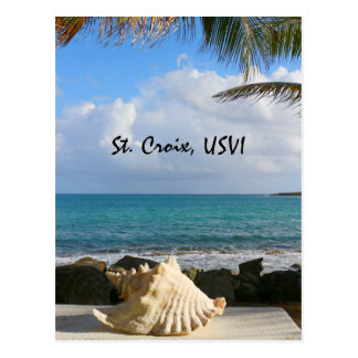 Sea and Sea Shell Postcard
