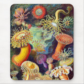 Sea Anemones Ernst Haeckel Fine Art Mouse Pad