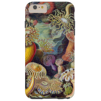 Sea anemones Haeckel illustration Tough iPhone 6 Plus Case