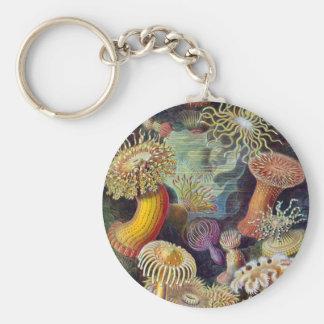 Sea Anemones Key Ring