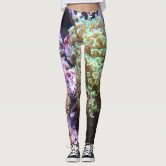 Sea Anemones Leggings