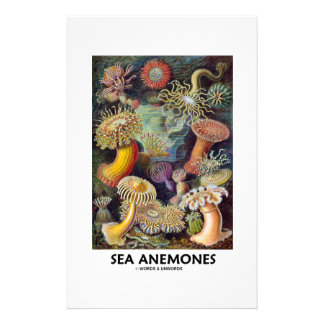 Sea Anemones Personalized Stationery