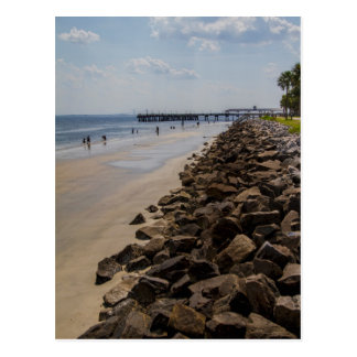 Sea Barrier Atlantic Ocean Georgia Beach Postcard