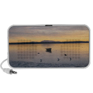 Sea Birds and Boat Travelling Speaker