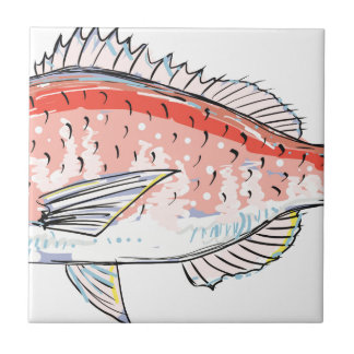 Sea Bream Red Sketch Small Square Tile