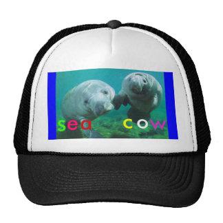 sea cow cap