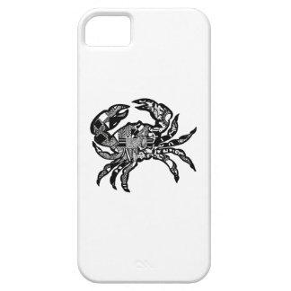 Sea Crawl iPhone 5 Covers