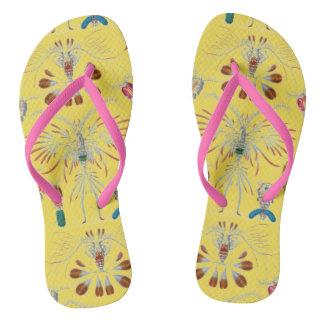 Sea Creature Design Pair of Flip Flops