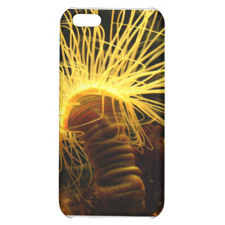 Sea Creature Cover For iPhone 5C