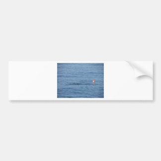 Sea diver in scuba suit swim in water bumper sticker
