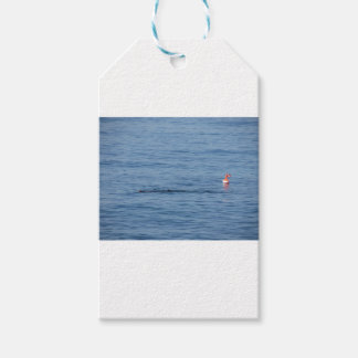 Sea diver in scuba suit swim in water gift tags