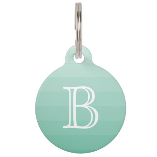 Sea Foam Green Stripes Monogram Initial Simple Pet ID Tag