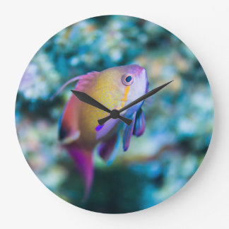 Sea goldie and colorful cute fish large clock