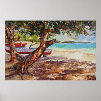 Sea Grape Tree Poster