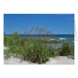 Sea Grass along the seashore Card