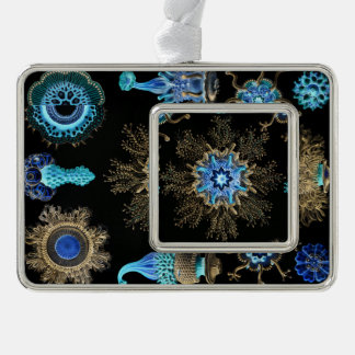 Sea Green Siphonophorae Silver Plated Framed Ornament