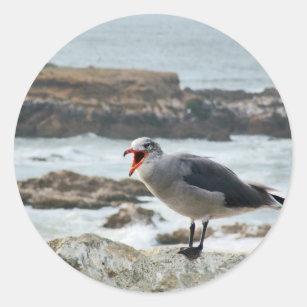 Sea Gull Classic Round Sticker