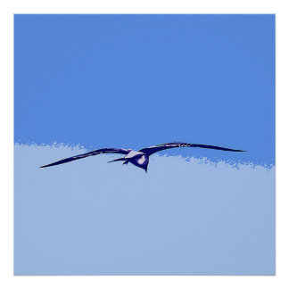 Sea Gull In Flight Poster