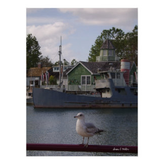 sea gull on dock signed poster
