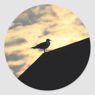 Sea Gull Sunset Sticker