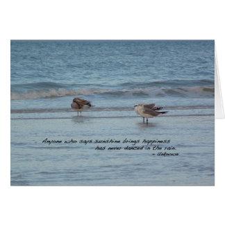Sea Gulls in Naples, Florida Card