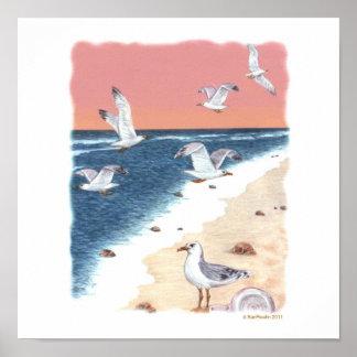 sea gulls print