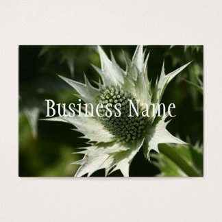 Sea Holly  Business Card