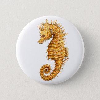 Sea horse Hippocampus hippocampus 6 Cm Round Badge