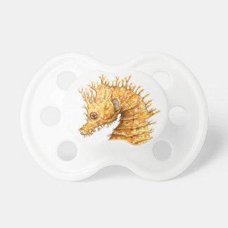 Sea horse Hippocampus hippocampus Dummy